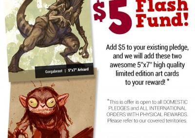 flash fund info